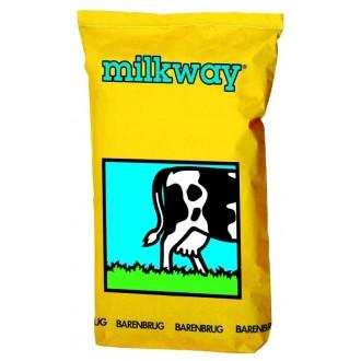Barenbrug Milkway Super Trawa Pastewna 15 kg BG-6