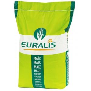 Kukurydza ES Euralis Kongress na ziarno, kiszonkę