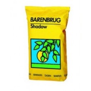 Trawa Barenbrug Shadow 5 kg
