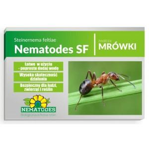 Nematodes SF 50 mln Nicienie na Mrówki 100 mrowisk